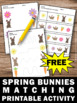 FREE Spring Activities Preschool Matching Special Education and Autism Resources