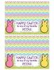 Easter Peeps Treat Bag Topper