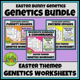 Easter Science Worksheet - Easter Bunny Genetics Worksheet