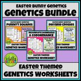 Easter Bunny Genetics Worksheets (Punnett Squares, Dihybrid Crosses)