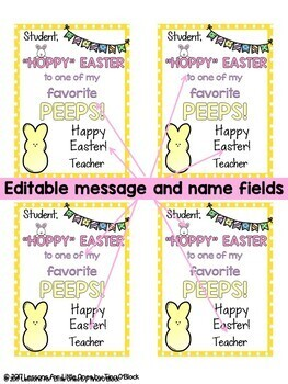 Easter student gift tags 8 editable designs tpt easter student gift tags 8 editable designs negle Images