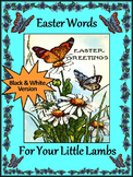 Easter Language Arts Activities: Easter Words Flash-card Set