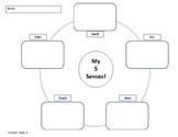 Easy 5 Senses Graphic Organizer