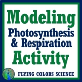 Easy Effective Modeling Photosynthesis Respiration Beads A