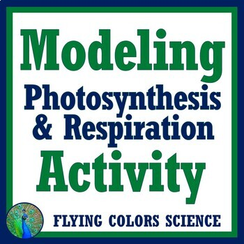 Easy Modeling Photosynthesis Respiration Beads Lab Activity NGSS MS-LS2-3