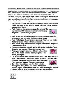 Flower Structure- Easy Flower Model