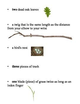 Easy Nature Scavenger Hunt (for spring or fall)