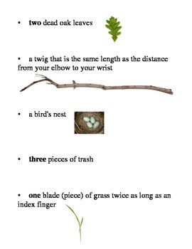 Easy Nature Scavenger Hunt (for spring or fall)
