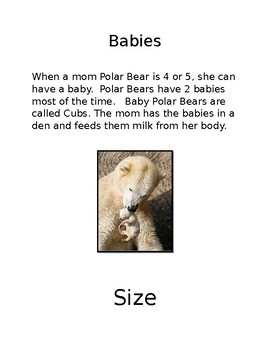 Easy Polar Bear Facts Reading Passages