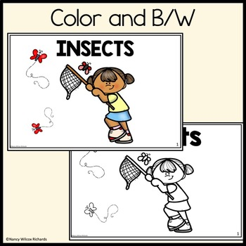 Leveled Reader: Insects (Differeniated Levels for K-2)