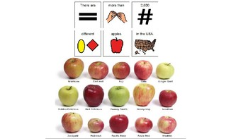 Easy Reader Nonfiction - Apples
