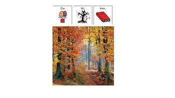 Easy Reader Nonfiction- Fall