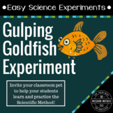 Easy Science Experiments:  Gulping Goldfish