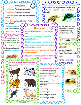 Eating Habits - Animal Life Science Unit 1 with Worksheets