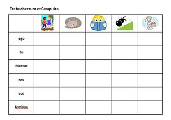 Ecce Romani 1A: Chapter 8 Notes and Activities