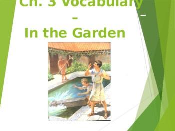 Ecce Romani I Ch. 3 Vocabulary PowerPoint