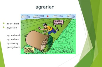 Ecce Romani I Ch. 2 Derivative PowerPoint