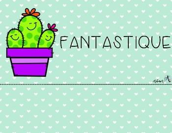 Échelle du comportement - Cactus