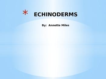 Echinoderms Powerpoint