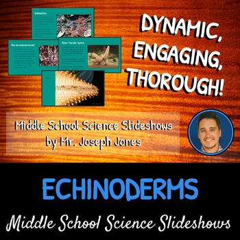 Echinoderms: A Life Sciences Slideshow!