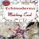 Echinoderms - Invertebrates Montessori Matching Cards