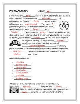 Echinoderms Note Taking