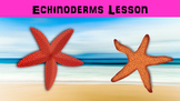 Echinoderms Lesson with Power Point, Worksheet, and Creative Activity