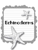 Echinoderms. Research Template Packet. Apologia Zoology 2. Lesson 11