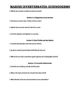 Echinoderms Worksheet
