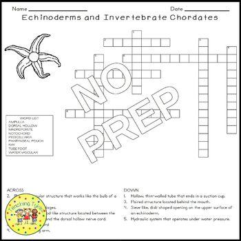 Echinoderms and Invertebrate Chordates Biology Science Crossword
