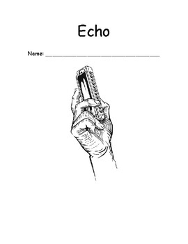 Echo - Chapter-by-Chapter Reading Comprehension Questions