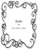 Echo Novel Unit