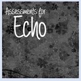 Echo by Pam Munoz Ryan Assessments