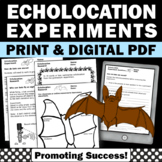 All About Bats Echolocation Activities Halloween Science Experiments