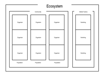Eco-Builder - The Ecosystems Game