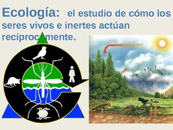 Ecología/Ecology Vocabulary (Spanish)