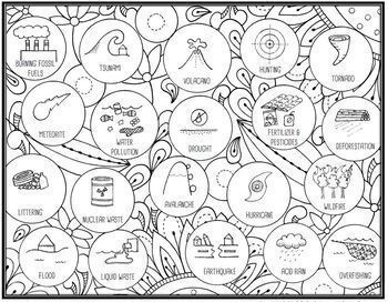 Ecological Impacts Seek & Sort Doodle Page and Card Sort