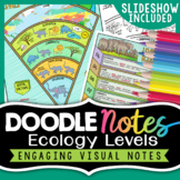 Ecological Levels - Sketch Notes - Doodle to Learn
