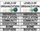 Ecological Levels of Organization Foldable