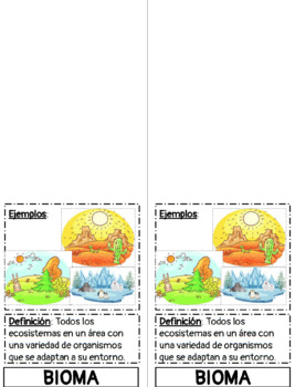 Ecological Levels of Organization Foldable (Spanish)