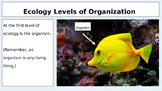 Ecological Organization Levels