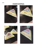 Ecological Pyramid Activity