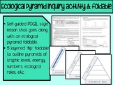 Ecological Pyramids Guided Inquiry