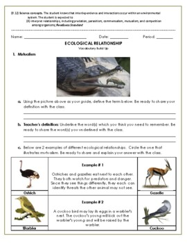Ecological Relationship / Symbiosis vocabulary build up (12A)