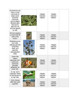 Ecological Relationships Practice