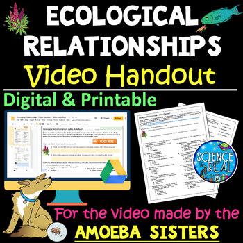 Amoeba Sisters Alleles And Genes Worksheet Answers + My ...