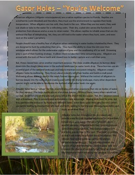 Ecological Role of Gator Holes in the Everglades & Don't F