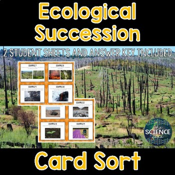 Ecological Succession Card Sort