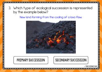 Ecological Succession - Digital Boom Cards™ Sort