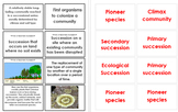 Ecological Succession - Flashcards (11D)